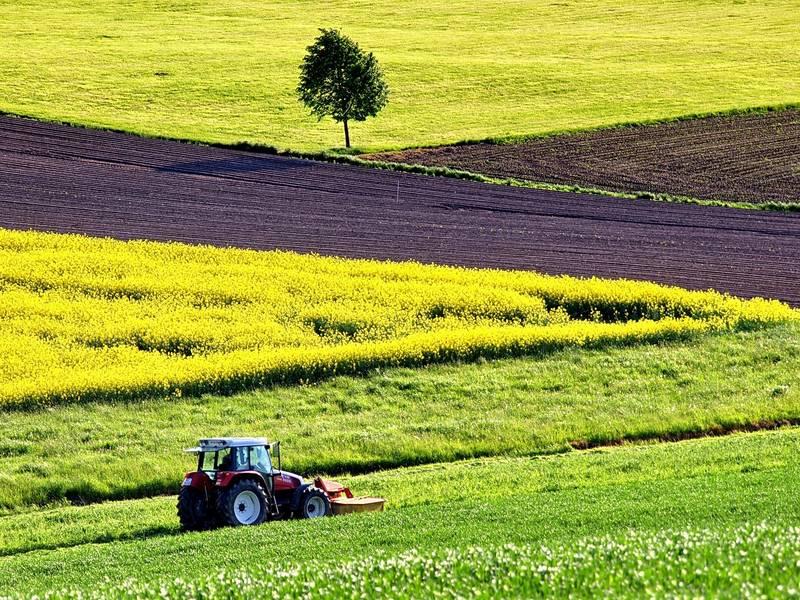 agriculture 1619437 1920 © Pixabay