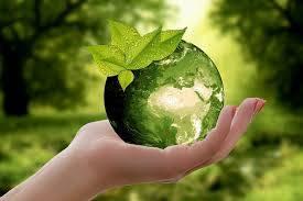 schutz unserer natur © pixabay