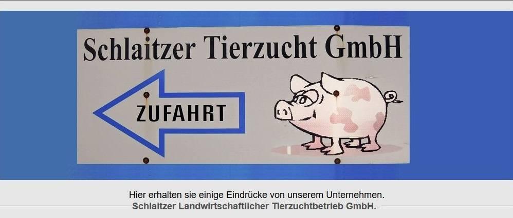 Blick Schlaitzer Tierzucht GmbH © Schlaitzer Tierzucht GmbH