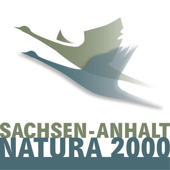 logo N2 v auf weiss kl