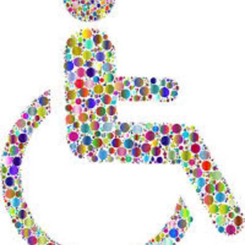 Behindertenbeauftragte