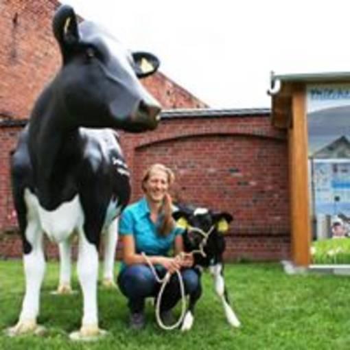 Blick auf den Landwirtschaftsbetrieb Finke GbR © Landwirtschaftsbetrieb Finke GbR